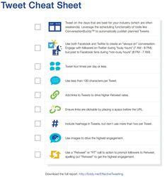 Buddy media tweet sheet