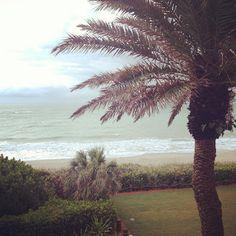 Who me, run?: Greetings from the Treasure Coast!