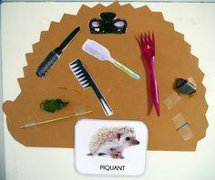 doux/piquant Montessori, Module, Conte, Albums, Preschool, Science, Kids, Animals, World Discovery