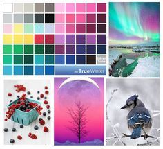 COLD WINTER Cold winter - a palette of bright colors icy, associated with a frosty climate, because due to the bright blue impurity seems that all the colors slightly frozen. Contrasting palette of winter landscapes and the Northern Lights.