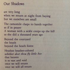 """Our Shadows"" by Jaan Kaplinski."