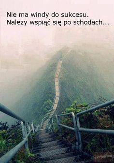 Haiku Stairs (Stairway to Heaven), Valley of Haiku near Kaneohe on the island Oahu, Hawaii.: I want to go to there, next week. Stairway To Heaven, Places To Travel, Places To See, Travel Destinations, Travel Trip, Hawaii Travel, Travel Hacks, Oahu Hawaii, Honolulu Oahu