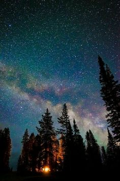 Beautiful pic of camping at Bayhorse lake, Challis ID. By Brooke Lloyd Tumblr Backgrounds, Cute Wallpaper Backgrounds, Galaxy Wallpaper, Cute Wallpapers, Iphone Wallpaper, Landscape Photography, Nature Photography, Night Photography, Landscape Photos