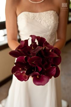 maroon calla lillies I think it needs some white with them