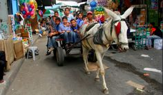 20 incredible journeys to school that will make yours look boring