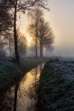 Sunset, sunrise, trees, water, stream, reflections, beauty of Nature, misty landscape, mysterious mist, fog, peaceful, silence, photo