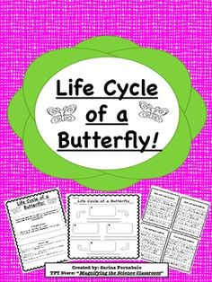 Students use a graphic organizer to draw, label, and describe the life cycle of a butterfly.  Included are cut-and-paste description cards for struggling writers! Great for different levels of learners!  Click Here to see the Life Cycle of an Insect Complete SetThanks for visiting my store!Click the star at the top of the page to follow me!