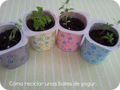 Reciclado de potes de yougurt