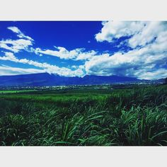 #followme #follow #new #picoftheday #photooftheday #world #photographer #team974 #974island #landscape #mountains #weare974 #canesugar #iledelareunion by trail_nature
