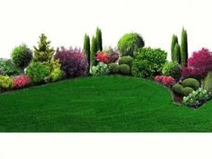 Garden (No. Landschaftsarchitekturstudio - garten-ideen District Garden (No. Landschaftsarchitekturstudio District Garden (No. Garden Landscape Design, Landscape Architecture, Amazing Gardens, Beautiful Gardens, Evergreen Garden, Garden Shrubs, Front Yard Landscaping, Landscaping Ideas, Small Gardens