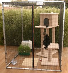 A perfect place for your feline friend to enjoy the great outdoors in safety. - Cats and Meows - A perfect place for your feline friend to enjoy the great outdoors in safety. A perfect place for your feline friend to enjoy the great outdoors in safety. Outdoor Cat Shelter, Outdoor Cats, Outside Cat Enclosure, Ikea Cat, Theme Design, Cat Cages, Cat Run, Cat Playground, Wooden Cat