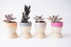 Mini Planters set of 4, Peach, Grey, Purple and Taupe, Natural Wedding, Spring Decor via Etsy
