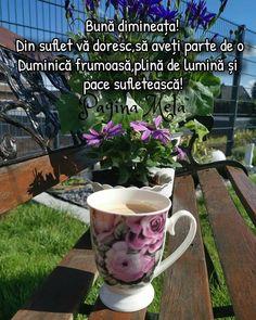 Mugs, Mug, Cups