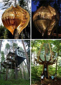 Modern Treehouses