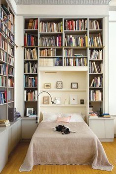 Dreamy bedroom with a wall of books