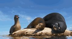 finding dory gerald sea lion rock gif