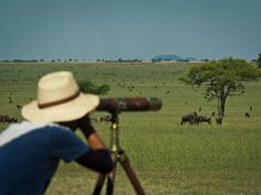 Serengeti National Park Safaris Serengeti National Park, Best Rated, Tent Camping, Safari, National Parks, Tours, Holidays, Vacations, Holidays Events