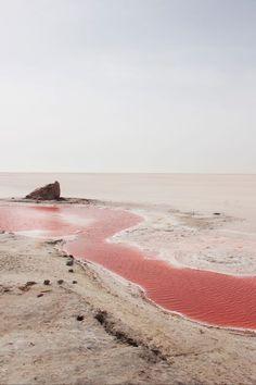 splash of pink