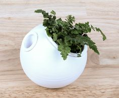 Avoid the danger of over- or under-watering your plants with this attractive, modern, self-watering planter.