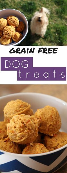 Allergies can be tricky for dogs. These grain free dog treats are the perfect pick me up for your pooch!
