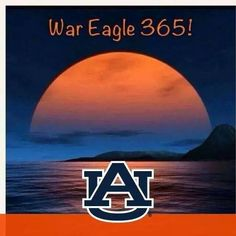Sec Football, Auburn Football, College Football Teams, Football Season, Auburn Alabama, Clemson, Auburn Vs, Auburn Tigers, Arkansas Game