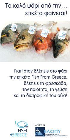 Fish from Greece - Home - Legacy of Greece Greek Fish, Fish Farming, Aquafaba, Frozen Yogurt, Vitamins And Minerals, Wine Recipes, Brunch, Nutrition, Snacks