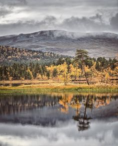 Autumn 🍁 #Lapland #enontekiö #Hetta #Finland #VisitLapland 📷 @timoksanen Endless Night, Fantasy World, Tatoos, How Are You Feeling, The Incredibles, Inspire, Autumn, Mountains, Landscape
