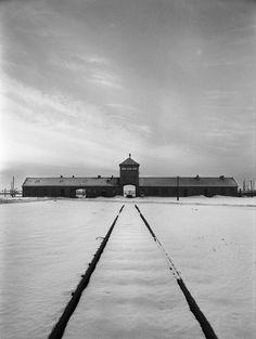 70 ans de la libération des camps : Auschwitz vu par Raymond Depardon 9