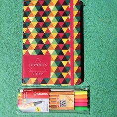 Cadernos e canetas.