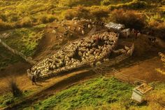 Winner – Romania - Auras Mihaiu, Winner, Romania, National Award, 2015 Sony World Photography Awards
