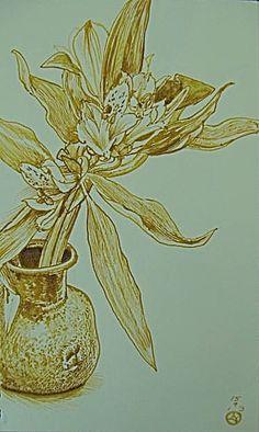 Asrtromelia by Luis Vargas Saavedra Pen and ink