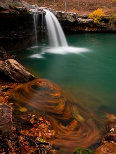 Fallen leaves, caught below Falling Water Falls, which is on Falling Water Creek. The falls can be easily reached via Falling Water Road, in the Ozark National Forest in Arkansas, USA