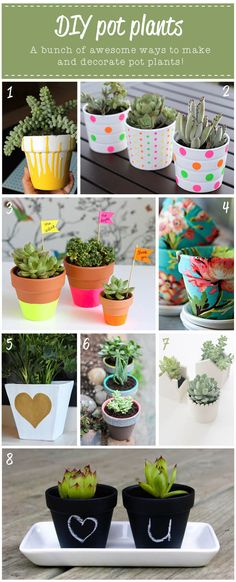 DIY pot plant ideas.  Ok the Pot Plant title makes me snicker. I think that they meant plant pots.  But they do look cute!