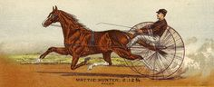 Click on Images to Enlarge These are 3 Circa 1880s Victorian Graphics! These show some Men racing Horses, while riding in a little cart. Apparently this is called Harness Racing. I thought the masculine theme of these prints might work well for Father's Day Cards.