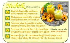 Raw Food Recipes, Healthy Recipes, Dieta Detox, Wellness, Organic Beauty, Aloe Vera, Food Art, Natural Health, Gardening Tips