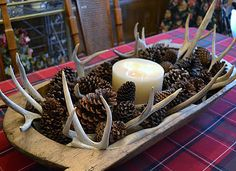 Love the antlers & pine cone combo. I would probably add a touch of red in…