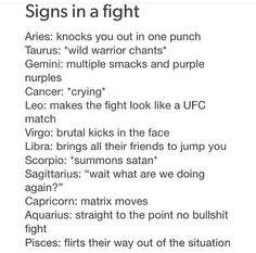 Zodiac when it comes to a fight Zodiac Signs Chart, Zodiac Sign Traits, Zodiac Signs Astrology, Zodiac Star Signs, Aquarius Zodiac, Zodiac Horoscope, Horoscope Signs, Sagittarius, Aquarius Lover