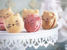 Kitty macarons!