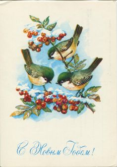 Happy New Year postcard - birds - Soviet postcard