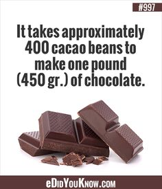 I now appreciate chocolate all the Food And Thought, Cacao Beans, One Pound, Random Facts, Food Facts, True Facts, Interesting Facts, Did You Know, Weird