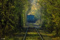 Zielony tunel w Orzegowie https://www.facebook.com/damiancyfkafotografiaindustrialna/photos/a.908499842521221.1073741838.880219918682547/922226617815210/?type=3&theater