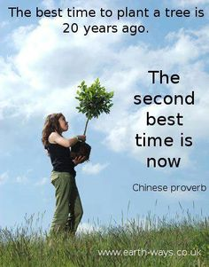 Articles What is Permaculture? Why is the future Permaculture? What is Forest Gardening? How to live with Slugs in a permaculture garden How to live with Flatworm in a permaculture garden Memes Feel free to share these on your favorite… Save Our Earth, Chinese Proverbs, Garden Quotes, Thing 1, Second Best, Akita, Change The World, Trees To Plant, Tree Planting