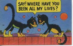 Vtg Novelty Post Card Cute Black Cat Art Retro Kitty 40's 50's Kitschy Souvenir | eBay