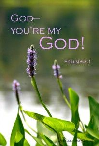 """When was the last time you said to God, """"I can't get enough of you! Those words from the psalmist are the impetus behind today's devotional thoughts. Biblical Quotes, Bible Verses Quotes, Bible Scriptures, Scripture Verses, Christian Life, Christian Quotes, Psalm 63, Isaiah 41, Spiritual Messages"""