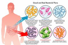 Fecal Transplant and Inflammatory Bowel Disease