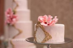 Pink, Gold Mini Cake