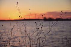 Chase the sunset Foto: Gulia production Utility Pole, Sunset, Sunsets, The Sunset
