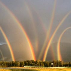 Eight rainbows in one field in Lehigh Valley, PA. I wouldn't mind owning that field with all those pots of gold.