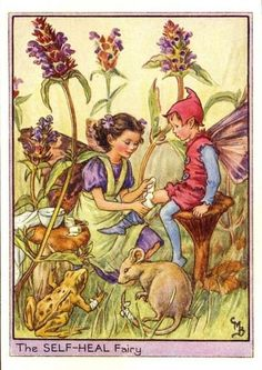 The Self-Heal Flower Fairy - Cicely Mary Barker