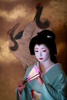 【Geiko,October Geiko is Toshimana. Shooting location is Nijyojinya. Photo by Mait. Geisha Japan, Japanese Geisha, Japanese Beauty, Japanese Kimono, Japanese Girl, Japanese History, Japanese Culture, Kyoto, Kimonos